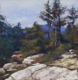 "<h5>Pastel Painters Society of Cape Cod Award </h5><p>Lyn Asselta: ""Granite and Fir""</p>"