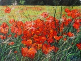 <h5>Maggie Price Memorial Award</h5><p>Poppies and Brambles, by Dick McEvoy </p>