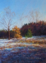 <h5>Great American Pastels Award</h5><p>Late Afternoon Sun, by Donna Rossetti-Bailey</p>
