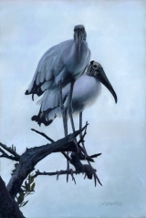<h5>Salter Award for Innovation</h5><p>Wood Stork Blues, by Patsy Lindamood</p>